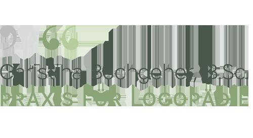Christina Buchgeher, B.Sc.